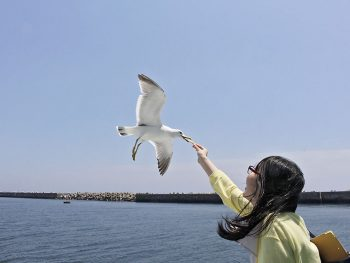 【応募期間終了】小名浜湾内を周遊!「いわきデイクルーズ」ペア乗船券プレゼント