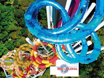 夏休みは『スパリゾートハワイアンズ』の「BIG☆ALOHA」を体験して大絶叫しよう!