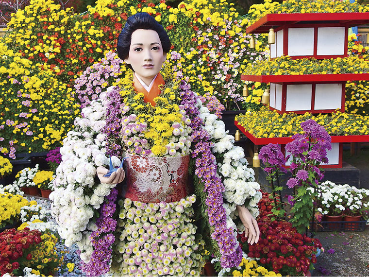 様々な人物を菊で表現する菊人形。開催中は多くの種類の菊が会場を埋めつくす
