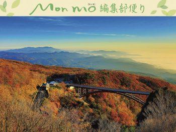 【受付終了】秋の風景写真を撮ったら「モンモフォトコンテスト」へ