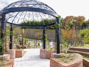 英国庭園がオープン!四季折々の植物を楽しもう