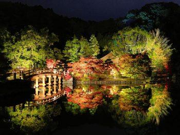 池面に映える、県下唯一の国宝建造物