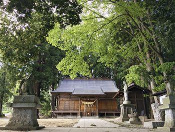 白和瀬神社の初詣。鎮守の森に身を置き、心と身体のお清めを