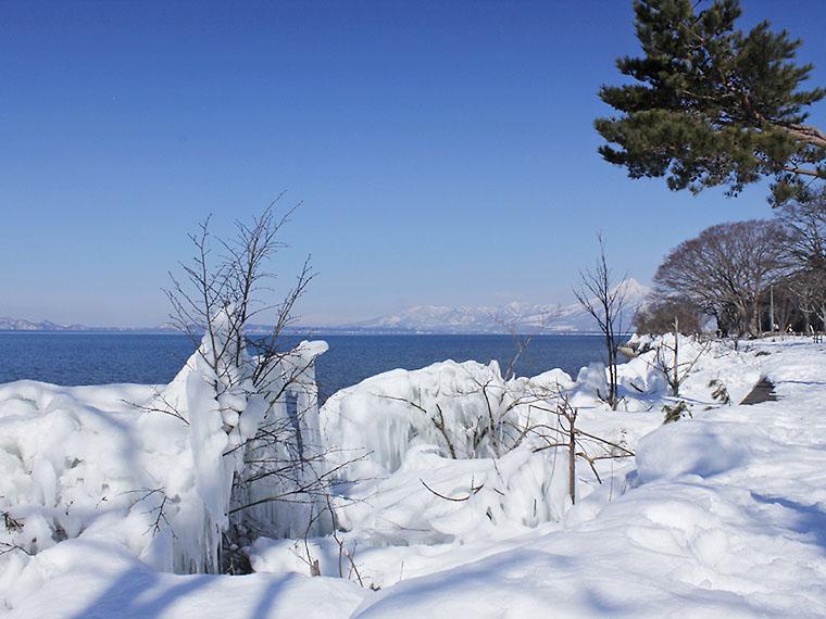 湖岸の木に着氷する「しぶき氷」