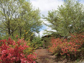彩り豊かな里山の四季を体感。イベントも多数開催