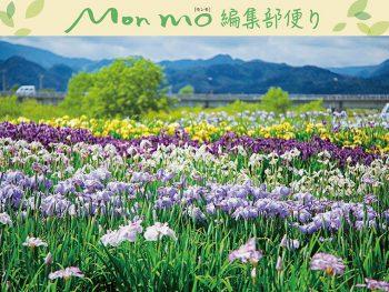 花や新緑を愛でながら御朱印をいただく旅!「モンモ初夏号」好評発売中!