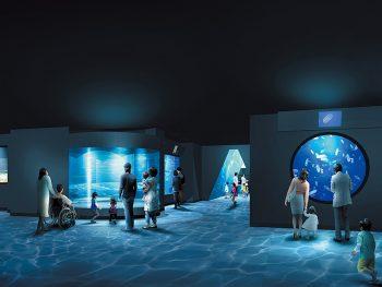 2018年4月『アクアマリンふくしま』にオープン!「ふくしまの海~大陸棚への道~ 」