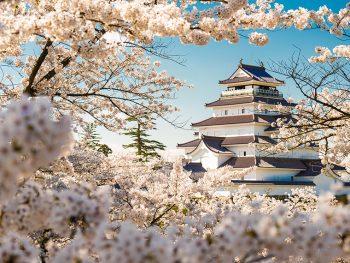 難攻不落の名城・鶴ヶ城の春