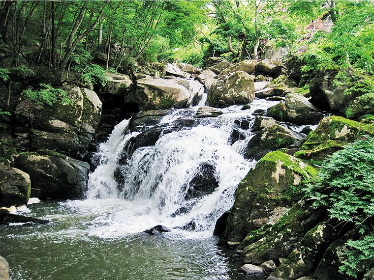 駐車場から約750mほど歩くと見える。手つかずの自然に囲まれた山鶏滝