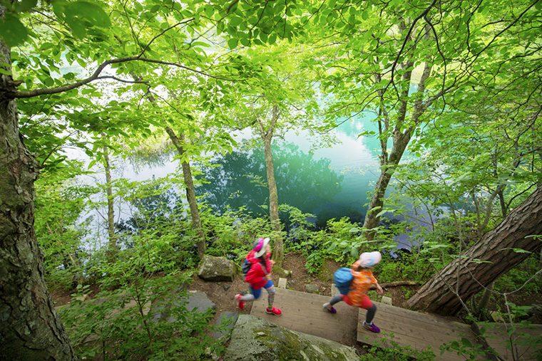 裏磐梯の景勝地湖沼群「五色沼」など、周辺観光も充実