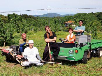 伊達市で楽しく無料農業体験!果物の収穫やあんぽ柿づくりも