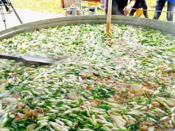 当日だけの珍しい芋煮も登場する、山形県長井市の芋煮会