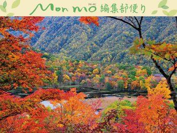 新たな紅葉の魅力を提案します!「モンモ錦秋号」好評発売中!