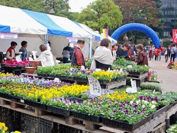 宮城県産の食も技も堪能しよう!仙台市に農産物や工芸品が大集合