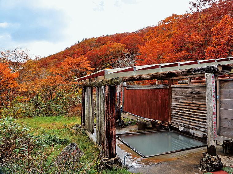 野趣満点!秋には紅葉を楽しめる男性用露天風呂