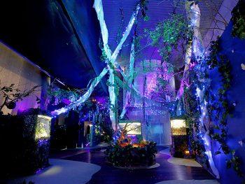 冬の水族館にジャングルが出現!幻想的な生き物たちに会いに行こう