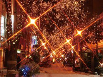 福島駅東口駅前広場やパセオ通りの街路樹を優しい光が包み込む