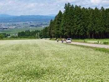 「塩川そば友の会」が提供!喜多方産そば粉の新そばを味わおう!!