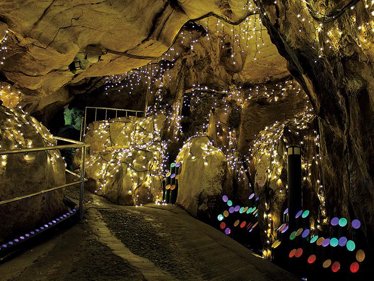 色とりどりの竹灯が並んだ第一弾の「竹取物語」。2014年から継続して「光の回廊」は設置され、来場者を温かく迎え入れる