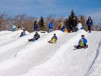 かまくらや雪の滑り台が登場!雑煮の振る舞いも!!冬ならではを楽しもう