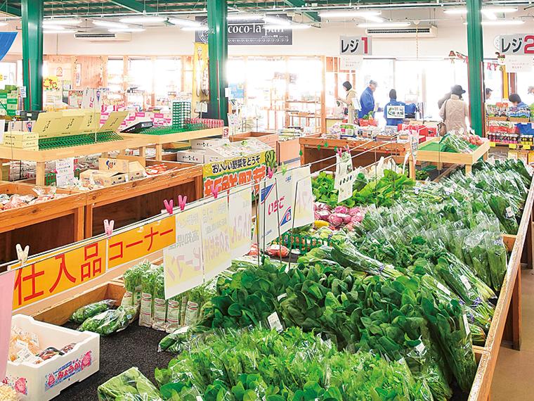 毎日新鮮な野菜が並ぶ農産物直売所「ここら矢野目店」