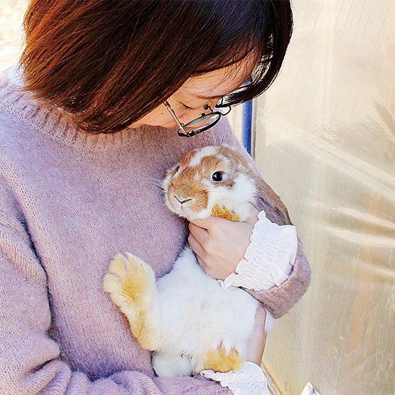 俊敏な動きをするウサギ。毛がふわふわで、鼻がヒクヒクしててかわいい…