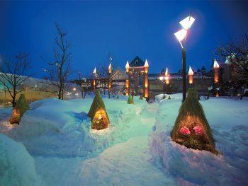 2月の連休は山形県高畠町へ!「たかはた冬らんまんまつり」開催