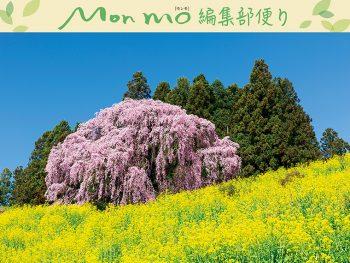 桜と花の情報を61ヵ所も掲載!「モンモ春号」3月10日発売
