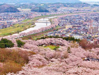 スロープカーの車窓から柴田町の「一目千本桜」を眺めよう