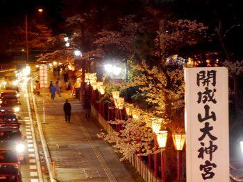 開成山大神宮で昼夜の桜を楽しむ。神社ならではの行事も堪能しよう