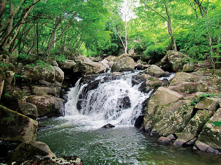手つかずの自然が美しい山鶏滝。駐車場から約750mと訪れやすい