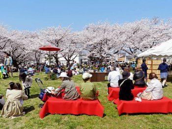桜並木の中、郷土芸能やステージイベントを開催