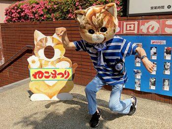 """猫好き集まれ!仙台市内の路地が1日限りの""""猫ロード""""に"""