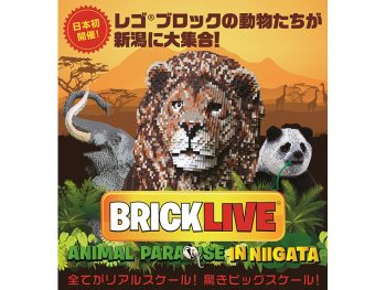 日本初上陸!レゴブロックで作る迫力ある動物たち
