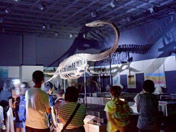 真っ暗な「福島県立博物館」を、懐中電灯片手に探索!
