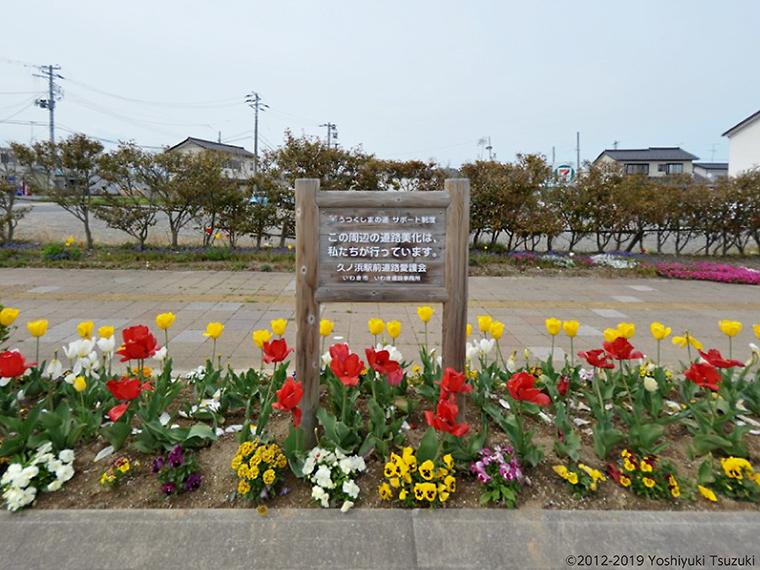 (2012.4.30 福島県いわき市久之浜)