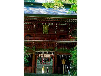 春はシャクナゲ、秋は紅葉が美しい。創建1,200年以上の由緒ある神社