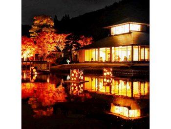 南湖公園の夜間ライトアップで、水鏡の紅葉を楽しむ