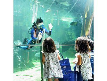 海なし県・栃木の水族館!海にはない川の魅力を知ろう
