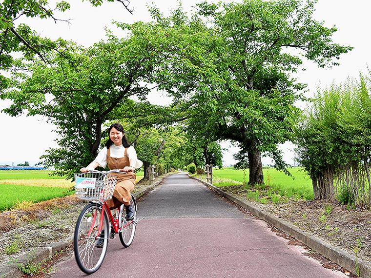 【たかはた満喫♪まちめぐり】たかはたの景色を楽しむ、まほろばサイクリング旅
