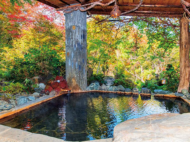 「美麗の湯」の露天風呂。内湯もある