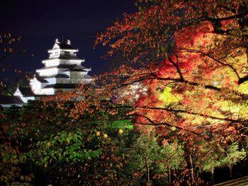 紅葉に染まる鶴ヶ城公園のライトアップイベント