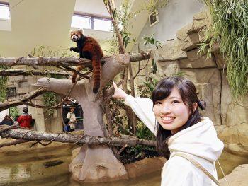 2019年春に「アジアの森」オープン!動物たちによるパフォーマンスショーも見どころ