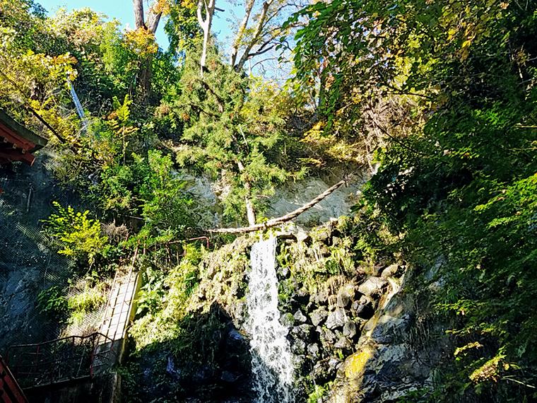 深緑の静寂に響く不動滝の趣