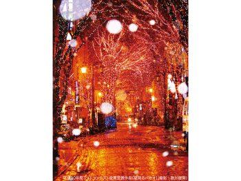福島市の街なかが、イルミネーションの光に包まれる