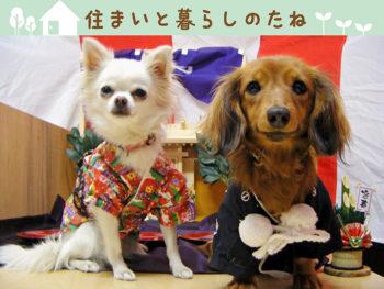 第26回 新春は総合住宅展示場のイベントに出かけよう!