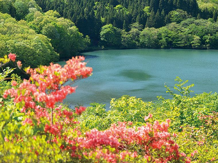 5月には土湯温泉町の「つつじ山公園」が見頃を迎える