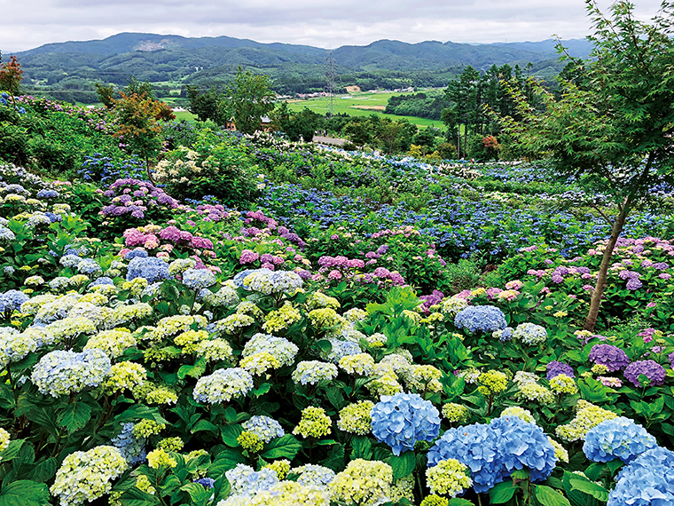 蓬田岳麓に位置する園内からは、田園や遠く連なる山々の景色に思わず深呼吸したくなる(写真提供/平田村役場)