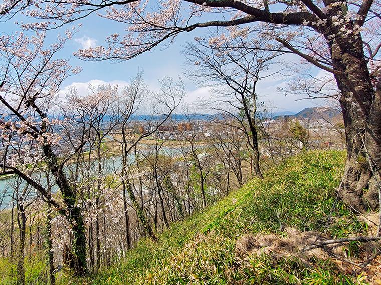 木が多すぎて眺めは残念な弁天山の展望台付近。ここでロケしなかったのは、この木のせいかも。眼下を流れているのは阿武隈川。木がなければ、劇中で裕一少年が佇んでいた場所に似てる(かな?)