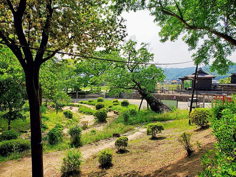 円形の池やケヤキの大樹が、城跡の風情を感じさせる紅葉山公園。右奥に見える建物は板倉神社